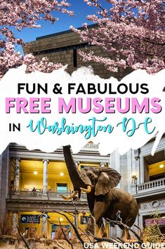 Heading to Washington DC? Don't want to spend all your money on activities? We compiled this big list of the BEST free museums in Washington DC that are fun for all ages! Click through to read our suggestions. Usa Travel Guide, Travel Usa, Travel Guides, Travel Tips, Travel Money, Spain Travel, Travel Hacks, Solo Travel, Best States To Visit