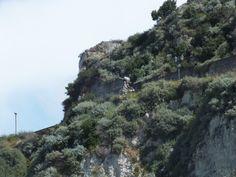 La leggendaria statua di Cilla vista dal mare.