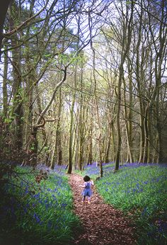 Bluebell Wood portrait photography  | Christina Clare Photography: Bridgnorth, Shropshire