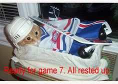 Chat des séries Canadiens, photo soumise par Robin Daniel / Habs playoff cat, submitted by Robin Daniel