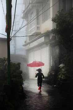 red umbrella ---- by Christophe Jacrot Pink Umbrella, Umbrella Art, Under My Umbrella, Walking In The Rain, Singing In The Rain, Christophe Jacrot, Tres Belle Photo, I Love Rain, Rain Days