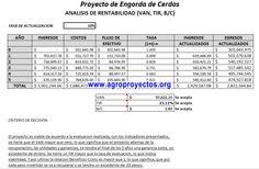 Ejemplo Gratis de Anexo LXII con Corrida Financiera en Excel
