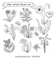 stock-vector-set-of-hand-drawn-wild-spring-flowers-coloring-book-page-vector-illustration-botany-vintage-391577782.jpg (450×470)