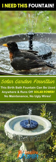 Solar Garden Fountain 😍 The Solar Water Fountain can be used anywhere and runs off solar power, this means no maintenance, ugly wires or set up, making it perfect for any backyard, garden or home this Garden Yard Ideas, Lawn And Garden, Garden Projects, Backyard Ideas, Garden Decorations, Garden Water, Water Gardens, Garden Club, Garden Theme