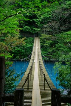 Yume no Tsuribashi suspension bridge, Shizuoka Shizuoka, Places To Travel, Places To See, Places Around The World, Around The Worlds, Wonderful Places, Beautiful Places, Magic Places, Art Japonais