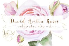 Roses clip art by GraphicRain on @creativework247
