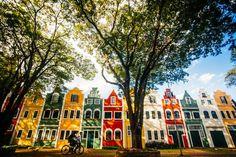 Holambra, a a cidade mais holandesa do Brasil.