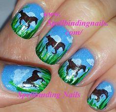 nail horses   Mash-37 & Mash-42 - 'A Scenic Horseback Riding Adventure'