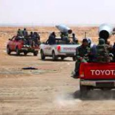 An entire 'brigade' of converted Toyota war trucks