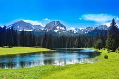 Durmitor National Park in Montenegro was formed by glacial activity. The park's Tara river canyon ho... - katritch Getty Images/iStockphoto