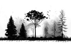 Tattoo Nature Tree Forests Woods Tat 65 Ideas You are in the right place about tattoo small Tree Tattoo Designs, Tattoo Sleeve Designs, Sleeve Tattoos, Wald Tattoo, 10 Tattoo, Forrest Tattoo, Tattoo Samples, Tattoo Minimaliste, Natur Tattoos