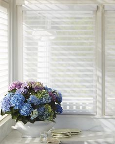 Alustra® Silhouette® window shadings opened in Kitchen