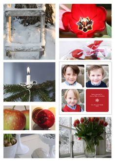 Minted holiday card inspiration board- have yourself a merry little christmas- inspired by nature; flowers, trees, apples and snow