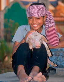 10 Reasons To Say NO To Animal Gifting Hunger Relief Organizations - See more at: http://freefromharm.org/agriculture-environment/10-reasons-to-say-no-to-animal-gifting-hunger-orgs/#sthash.H5aV38Mz.nMH4G40q.dpuf