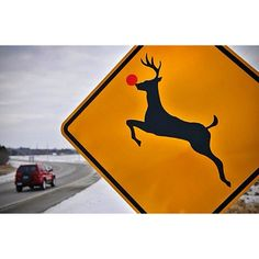 Rudolf...actually saw one like this on the North Shore Scenic Highway.