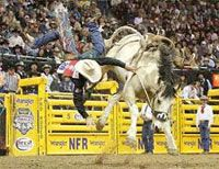 NFR Rodeo returns to Las Vegas!