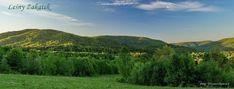 Leśny Zakątek: Pieczone pierogi z pyszną sałatką Pierogi, Vineyard, Outdoor, Outdoors, Vineyard Vines, Outdoor Games, Outdoor Living