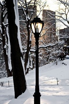 Sunset in the Snow ~ Central Park, NYC