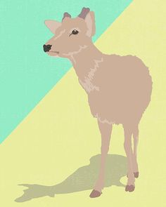 Today I've been #practising #drawing with #adobe #illustrator and a mouse only. Feels very unnatural because I always start with #pen and paper. Maybe one day I'll be able to afford that @wacomanz tablet!  This #deer is a celebration of my holiday to #Japan, where I was feeding deer and climbing mountains this time last year.  #practicemakesperfect #art #illustration #illustratorsoninstagram #newbie