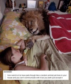 Pets are weird: | 33 Of The Greatest Things That Happened On Tumblr In 2013 @Gabrielle Schwabauer