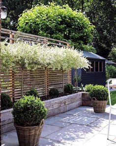 Backyard Swings, Backyard Sheds, Backyard Garden Design, Small Garden Design, Back Gardens, Outdoor Gardens, Side Yard Landscaping, Mediterranean Garden, Vegetable Garden Design