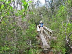 Dean Creek Bridge (Linda Benton)