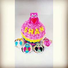 Giant size owl cup cake..
