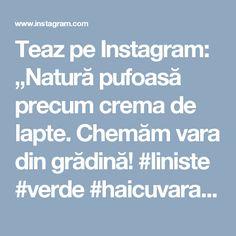"""Teaz pe Instagram: """"Natură pufoasă precum crema de lapte. Chemăm vara din grădină!  #liniste #verde #haicuvara #ceaicuzambet #ceainariateaz #teazmetender…"""""""