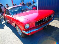FORD MUSTANG 289 CI ...