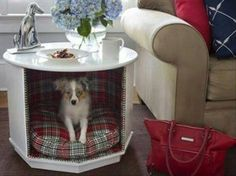Convert a Coffee table into functional pet bed,simply remove one side, line the inside with fabric and add a pillow for your pet.