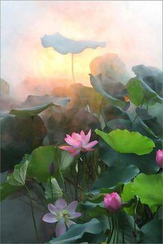 152 best album images on pinterest still life art florals and art liverwort flower lotus flowers trisaara pinterest mightylinksfo