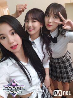 Chaeyoung, mina y jihyo
