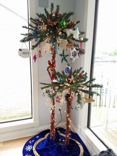 Adorable Palm Christmas Trees with Beach Ornaments.... Via Facebook: https://www.facebook.com/photo.php?fbid=10211546612923370&set=p.10211546612923370&type=3&theater