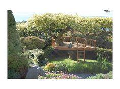 Tree house + Deck