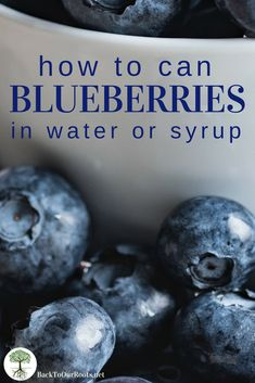Pressure Canning Recipes, Canning Tips, Home Canning, Pressure Cooking, Canning Food Preservation, Preserving Food, Charcuterie, Conservation, Canned Blueberries