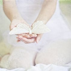 Image uploaded by Find images and videos about white, hands and butterfly on We Heart It - the app to get lost in what you love. Papillon Butterfly, Butterfly Kisses, Butterflies, White Butterfly, Giving Hands, Johann Wolfgang Von Goethe, Shades Of White, Soft Colors, Little Things