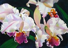 Anne Abgott Canadian born, Anne Abgott, maintains studios in Cortez, Florida and Linville, No. Watercolour Painting, Watercolor Flowers, Watercolours, Abstract Flowers, Orchid Drawing, Fruit Art, Learn To Paint, Botanical Prints, Beautiful Paintings