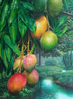Mangos bajo la lluvia  oleo sobre tabla