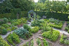 Vi har igen gæstebloggere på programmet. Klik på billedet til højre her på siden, hvis du vil læse om de andre gæstebloggere og deres haver....