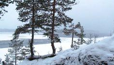 Winter day at Saimaa.