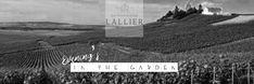 Lallier in the garden Wednesday, Champagne, 21st, Menu, Events, Garden, House, Menu Board Design, Garten