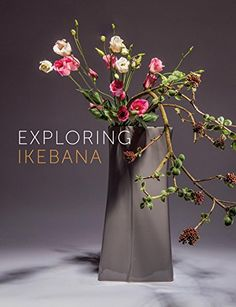 Exploring Ikebana by Ilse Beunen  http://www.amazon.com/dp/9058565041/ref=cm_sw_r_pi_dp_J.0xwb0XDGQ13