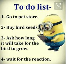 "After a great struggle, Today we collect the great collection of Funny and Hilarious minions that will make you laugh and funny and also make your day happy.So scroll down and keep reading these ""Top Funny Memes Of Minions"" and get it. Memes Humor, Funny Minion Memes, Minions Quotes, Funny Jokes, Minions Images, Jokes Quotes, Minion Pictures, Humor Humour, Diet Quotes"