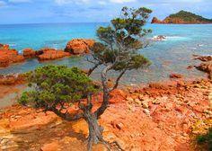 Sardinien mit Kindern: 5 Orte, die Du gesehen haben musst. :http://levartworld.de/sardinien-mit-kindern-5-orte-die-du-gesehen-haben-musst/