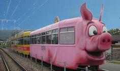 Direct bus to Pigs Museum - It's stylish (Schweine Museum Stuttgart)