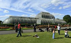 Campaigners weigh in as world-renowned botanical research centre faces budget reduction of £5m.