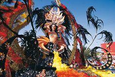 The carnaval of Tenerife ;) ......the second carnaval more important after Rio de Janeiro    http://fu-tenerife.com