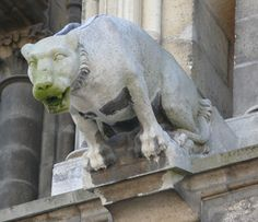 Gargoyle-reims-cathedral-france