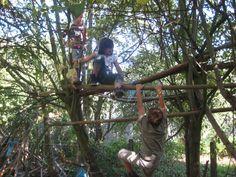 Kinderen maken zelf spannende klimaanleidingen in de bomen (heemtuin Hertog Karel)