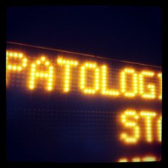 """""""Patologia"""" Stop, the best Bus Stop Ever"""